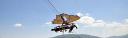 Volo dell'aquila - San Costantino Albanese