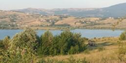 Riserva Regionale Naturale e Oasi WWF Lago Pantano