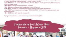 Carnevale di Tricarico 2019