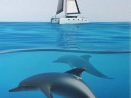 Alla scoperta dei delfini nello Ionio