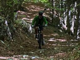 bosco e bici