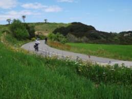 Campagne costa ionica in bici
