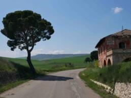 Verso Irsina